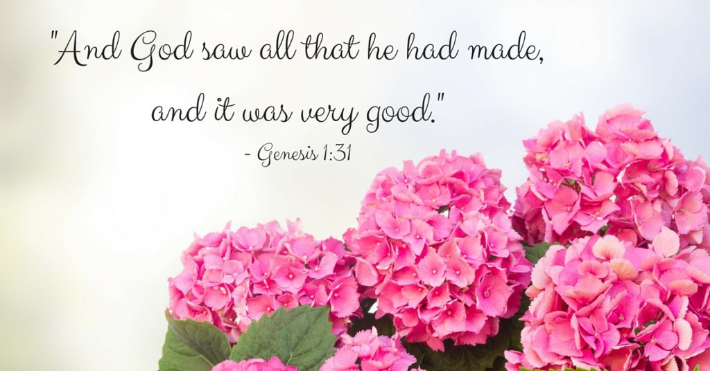 -And God saw all that he had made, and it was very good.--Genesis 1-31
