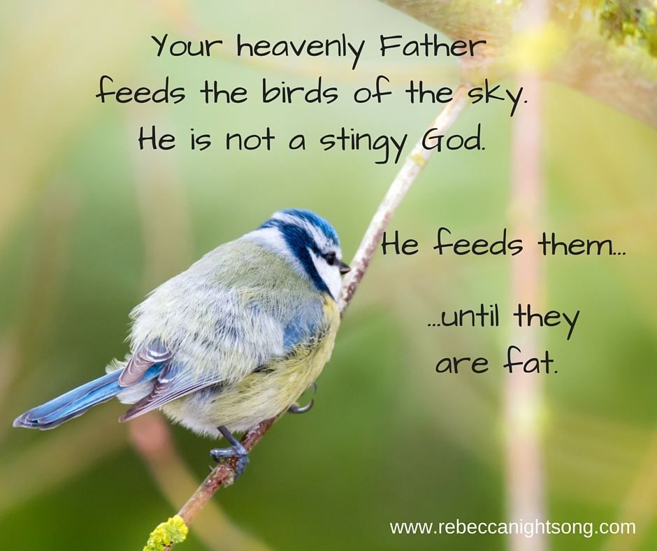 -See the birds of the sky, that they don't sow, neither. do they reap, nor gather into barns. Your heavenly Father. feeds them.---Matthew 6-26